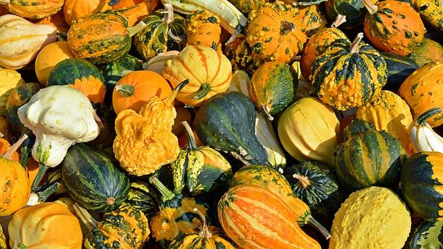 Autumn Harvest Cooking Class – October 13, 2016